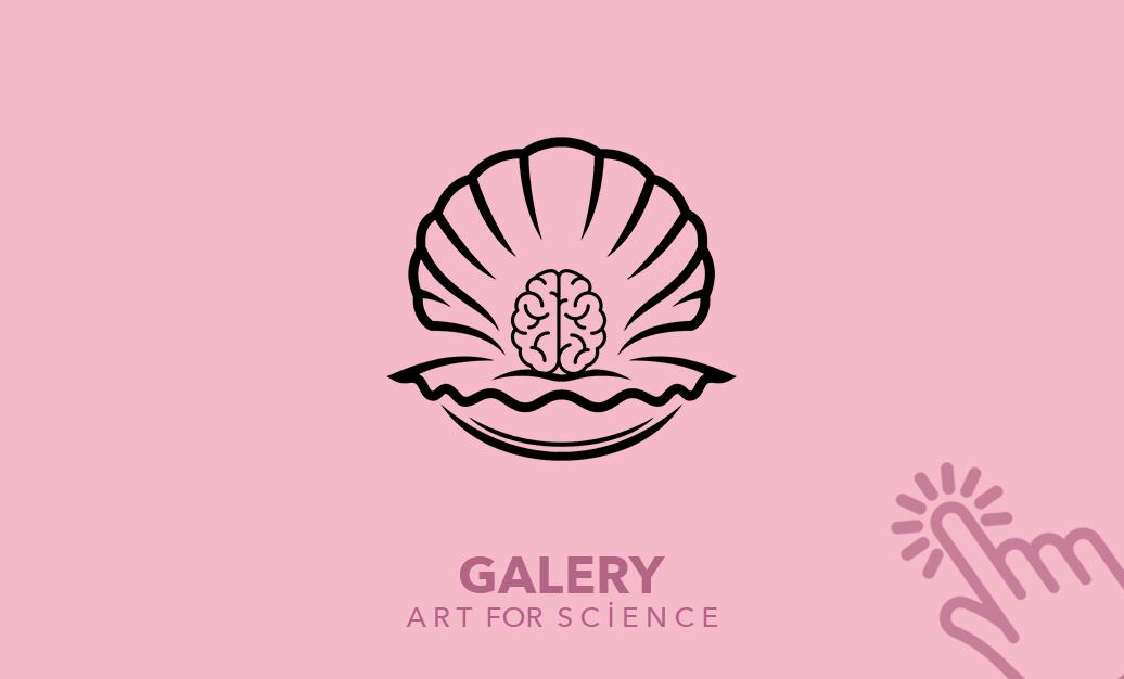 galery icon